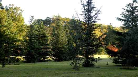arboretum-grande-lienne
